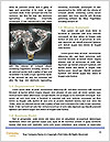 0000076825 Word Templates - Page 4
