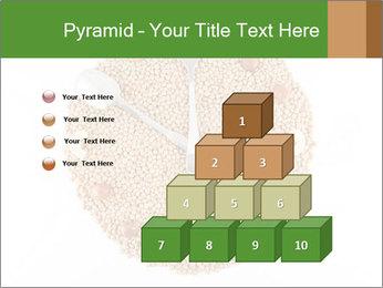 0000076844 PowerPoint Template - Slide 31