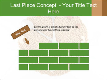 0000076844 PowerPoint Template - Slide 46