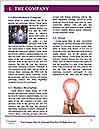 0000076846 Word Template - Page 3
