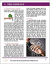 0000076848 Word Template - Page 3