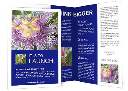 0000076855 Brochure Template