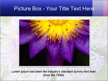 0000076855 PowerPoint Template - Slide 16