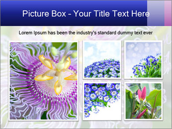 0000076855 PowerPoint Template - Slide 19