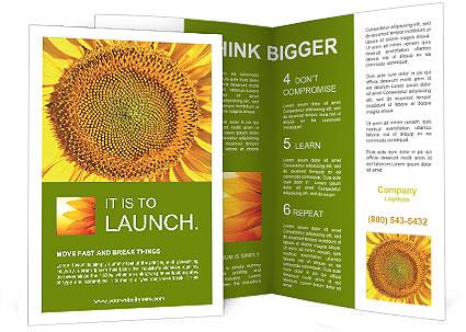 0000076867 Brochure Template