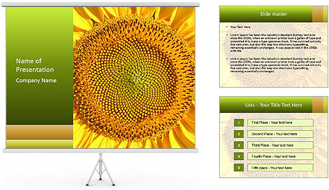 0000076867 PowerPoint Template