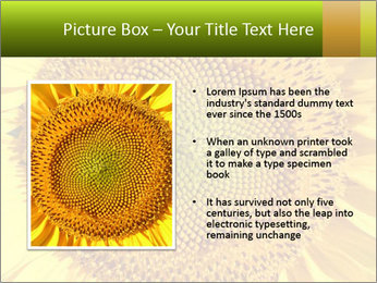 0000076867 PowerPoint Template - Slide 13