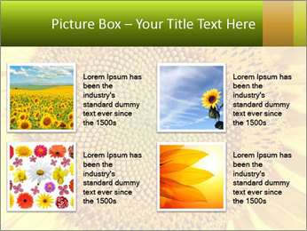 0000076867 PowerPoint Template - Slide 14