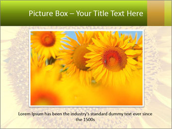 0000076867 PowerPoint Template - Slide 15