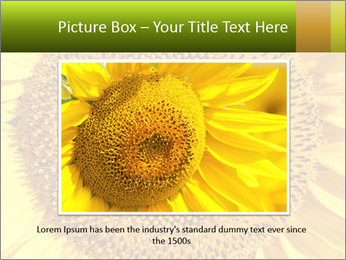 0000076867 PowerPoint Template - Slide 16