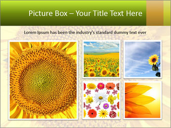 0000076867 PowerPoint Template - Slide 19