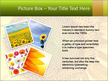 0000076867 PowerPoint Template - Slide 23