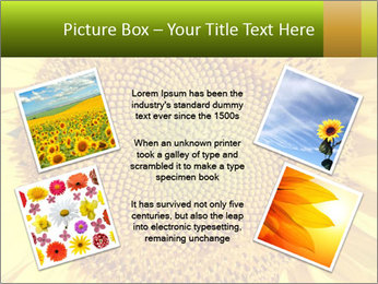 0000076867 PowerPoint Template - Slide 24
