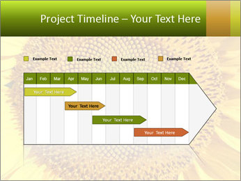 0000076867 PowerPoint Template - Slide 25