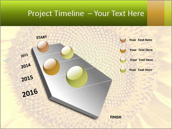 0000076867 PowerPoint Template - Slide 26