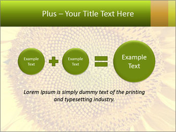 0000076867 PowerPoint Template - Slide 75