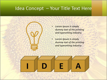 0000076867 PowerPoint Template - Slide 80