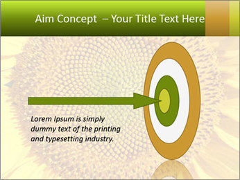 0000076867 PowerPoint Template - Slide 83