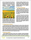 0000076867 Word Templates - Page 4