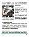 0000076877 Word Template - Page 4