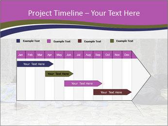 0000076879 PowerPoint Template - Slide 25
