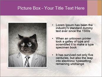 0000076888 PowerPoint Templates - Slide 13