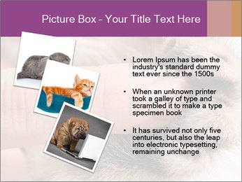 0000076888 PowerPoint Template - Slide 17