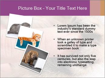 0000076888 PowerPoint Templates - Slide 17