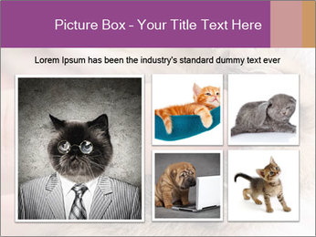 0000076888 PowerPoint Template - Slide 19