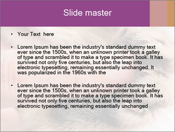 0000076888 PowerPoint Templates - Slide 2