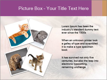 0000076888 PowerPoint Template - Slide 23