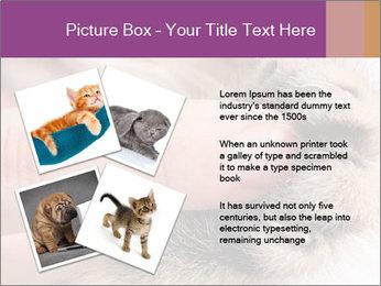 0000076888 PowerPoint Templates - Slide 23