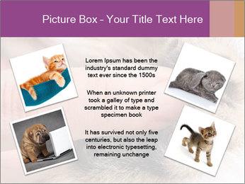 0000076888 PowerPoint Templates - Slide 24