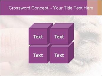 0000076888 PowerPoint Templates - Slide 39