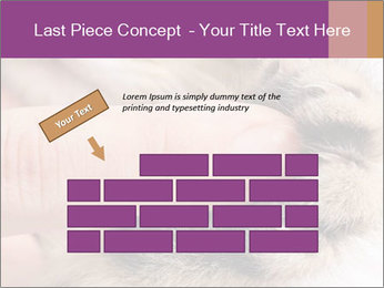 0000076888 PowerPoint Template - Slide 46
