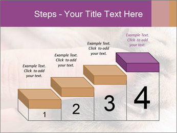 0000076888 PowerPoint Templates - Slide 64