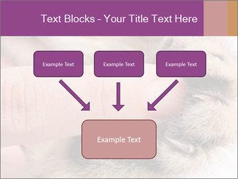 0000076888 PowerPoint Templates - Slide 70