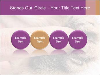 0000076888 PowerPoint Templates - Slide 76