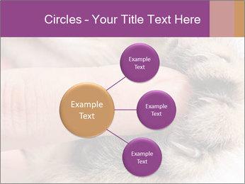 0000076888 PowerPoint Templates - Slide 79