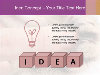 0000076888 PowerPoint Templates - Slide 80