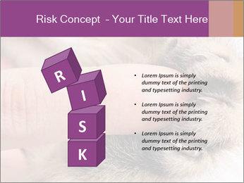 0000076888 PowerPoint Templates - Slide 81