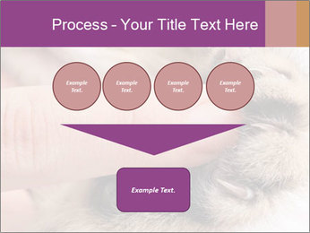 0000076888 PowerPoint Template - Slide 93