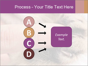 0000076888 PowerPoint Templates - Slide 94