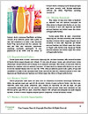 0000076889 Word Templates - Page 4