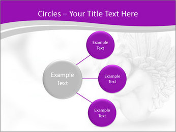 0000076893 PowerPoint Template - Slide 79