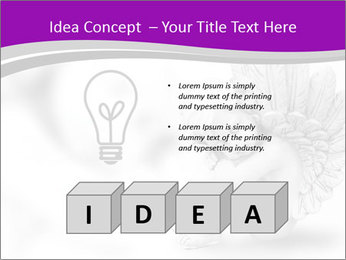 0000076893 PowerPoint Template - Slide 80