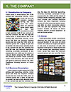 0000076907 Word Template - Page 3