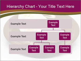 0000076909 PowerPoint Templates - Slide 67