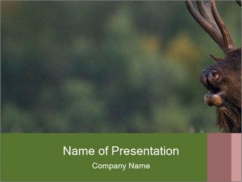 0000076921 PowerPoint Templates - Slide 1