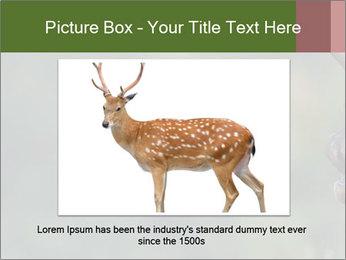 0000076921 PowerPoint Templates - Slide 15